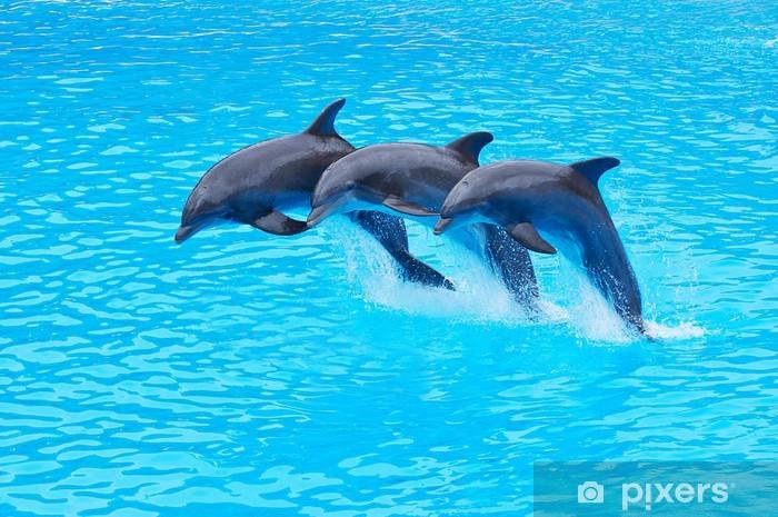 Sticker Pixerstick Saut grands dauphins, Tursiops truncatus - Thèmes