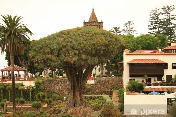 Fotomural Estándar Drago Milenario mas antiguo y palmera en Tenerife - África