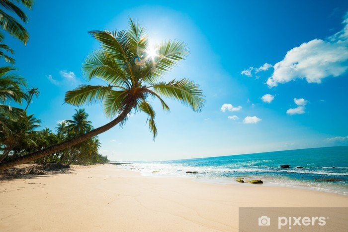 Vinyl Fotobehang Tropisch strand in de zon - Malediven