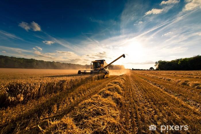 Fototapeta winylowa Moisson engin agricole2 - Rolnictwo