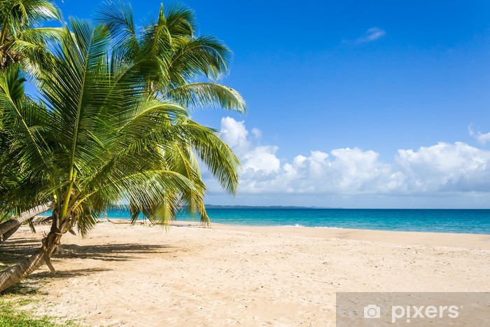 Sticker Pixerstick Palm beach - Vacances
