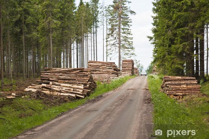 Naklejka Pixerstick Stosy drewna - Europa