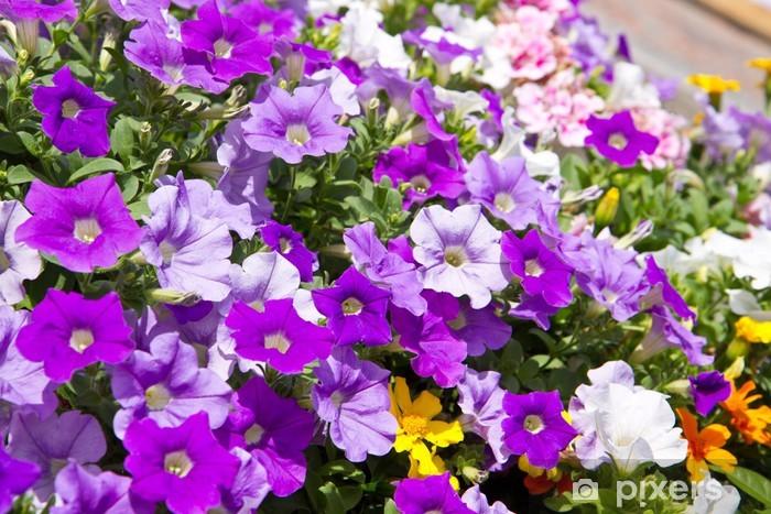 Fototapeta winylowa Dzwony - Kwiaty