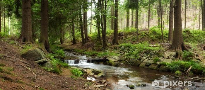 Fototapet av Vinyl Berg flod i skogen - Teman