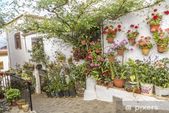 Patio Andaluz Wall Mural Pixers We Live To Change