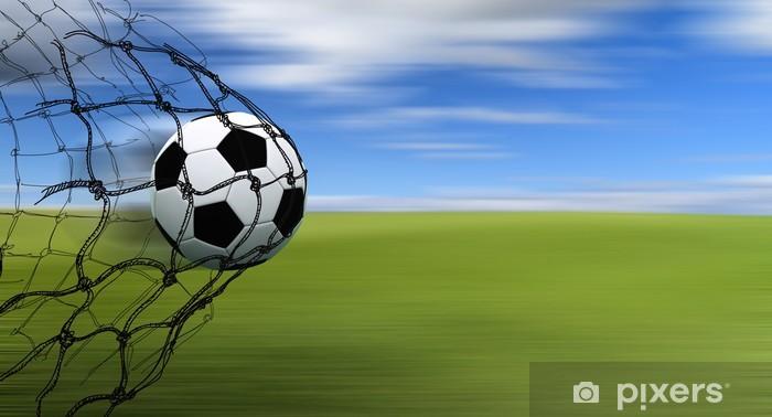 ,,,non solo calcio  - Pagina 2 Adesivi-pallone-da-calcio-in-una-rete.jpg