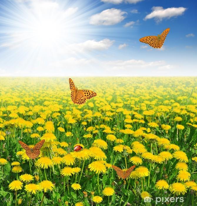 Fototapeta winylowa Mlecze z motylem na łące - Łąki, pola i trawy