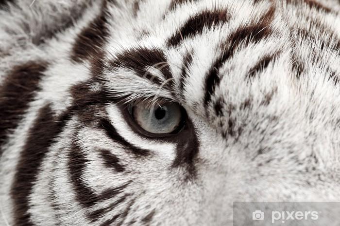 Pixerstick Dekor Vit tiger öga - Teman