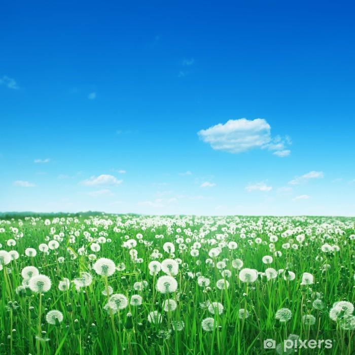 White cloud in blue ky and dandelion field. Pixerstick Sticker - Seasons