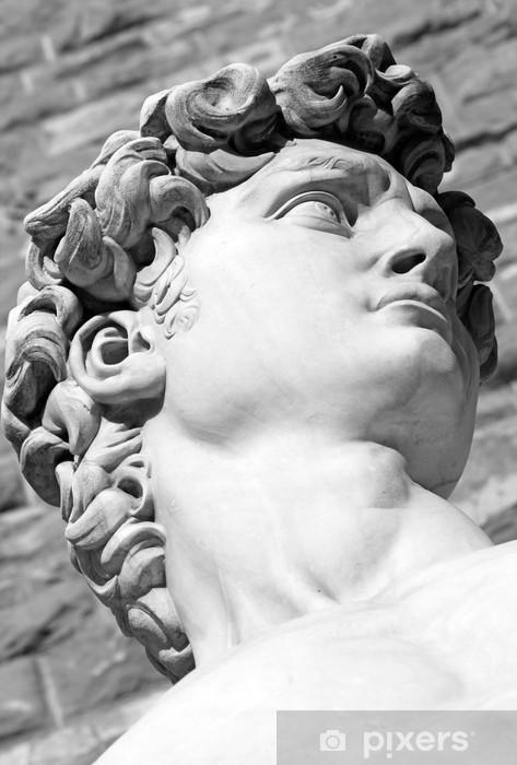 Fotomural Estándar Detalle de la escultura italiana famosa - David de Miguel Ángel, bl - Monumentos