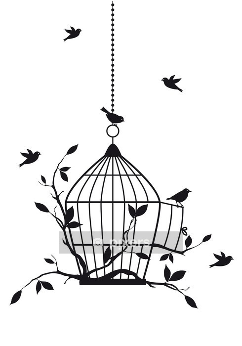 free birds with open birdcage, vector Wall Decal -