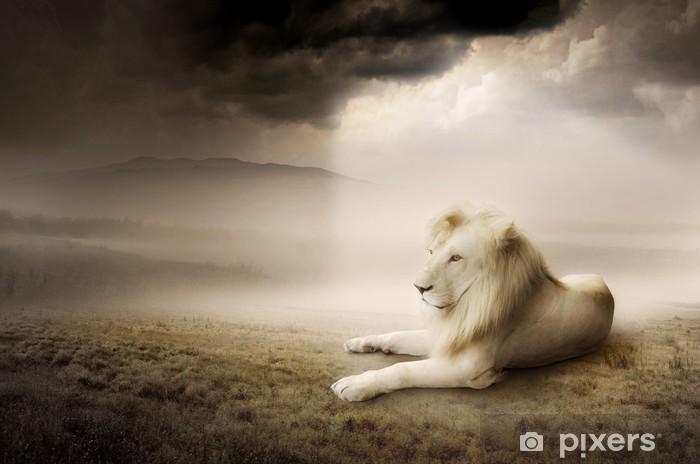 Fototapeta winylowa Biały lew na zachodzie słońca -
