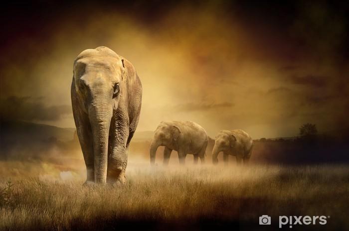 Naklejka Pixerstick Słonie na zachodzie słońca -