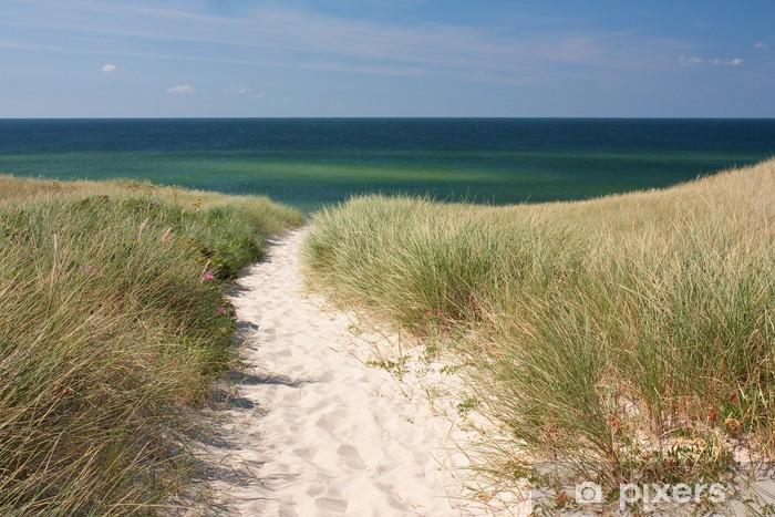 Naklejka Pixerstick Droga do plaży przez wydmy w Kampen na wyspie Sylt na Morzu Północnym - Niemcy