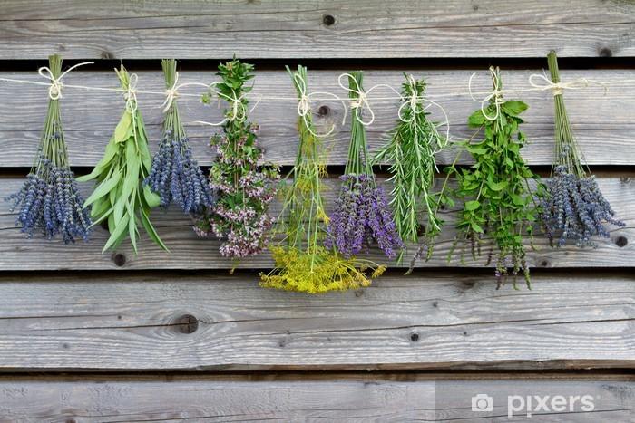 Fototapeta zmywalna Suszenie ziół na drewnianej stodole w ogrodzie - Zioła