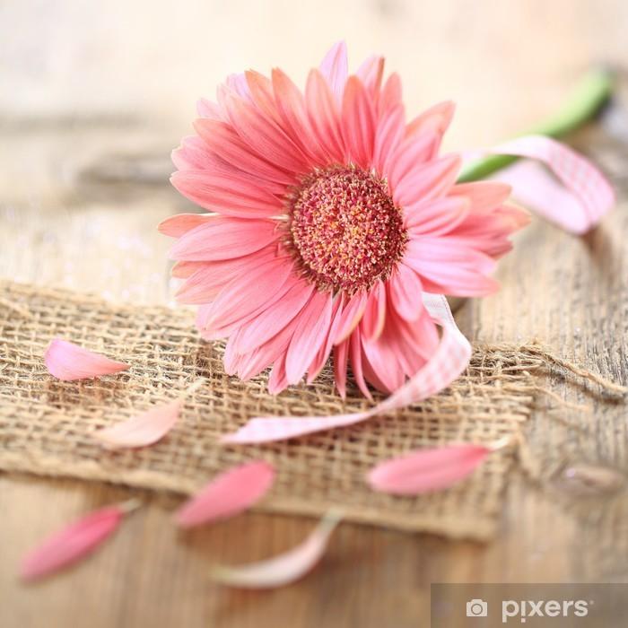 rosa Gerbera - Makro Pixerstick Sticker - Flowers