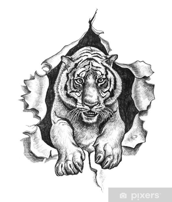 Fototapet Rita att dra av en tiger • Pixers® - Vi lever för förändring 9ef47d3a19725
