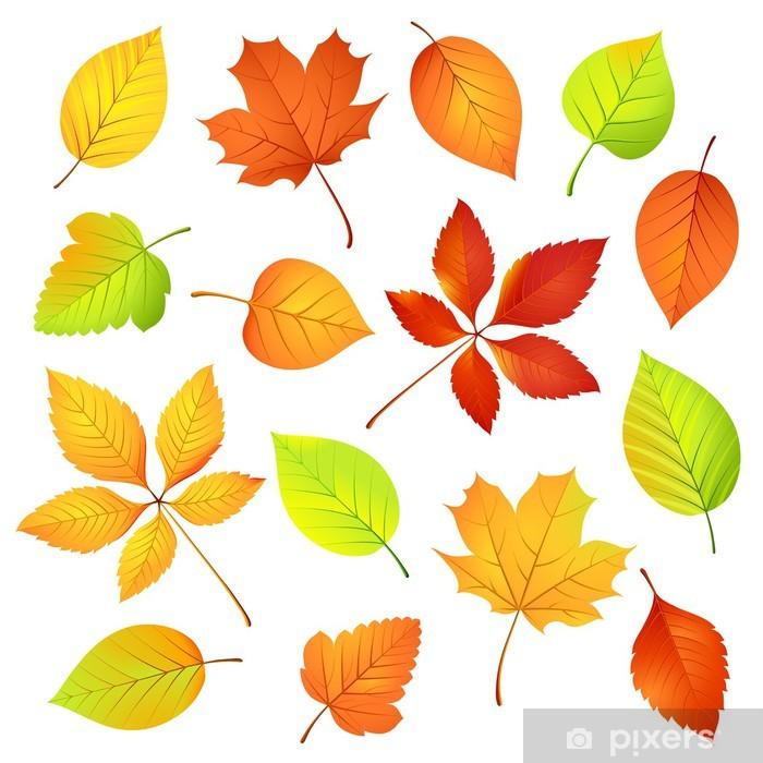 Plakat Jesienne liście, ilustracji wektorowych • Pixers® - Żyjemy by  zmieniać