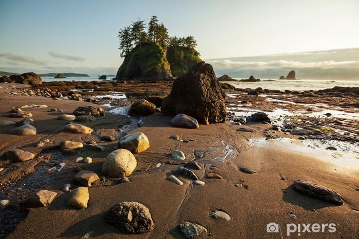 Fototapeta winylowa Na wybrzeżu Oceanu - Woda