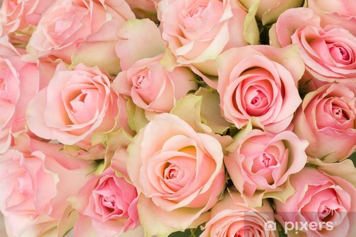 Papier peint vinyle Bouquet de roses roses. - Thèmes