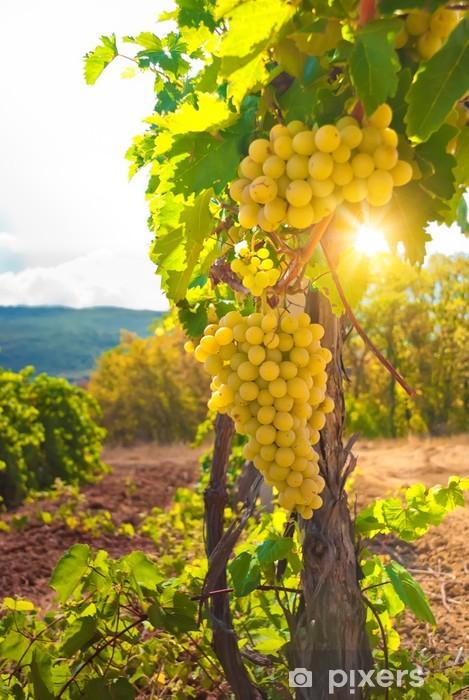 Vineyard Pixerstick Sticker -