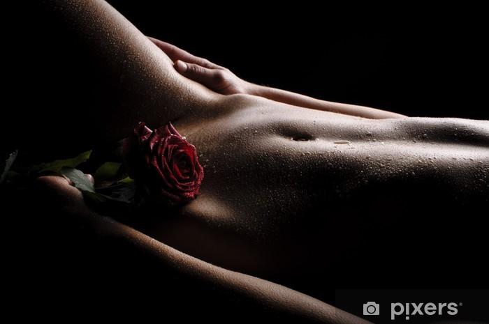 Fototapeta winylowa Nagi brzuch z różą - Tematy