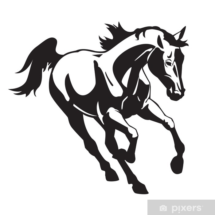 Poster Cheval courant image blanche noire - Sticker mural