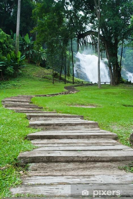 Naklejka Pixerstick Ścieżka wzdłuż wodospadu w lesie - Pory roku