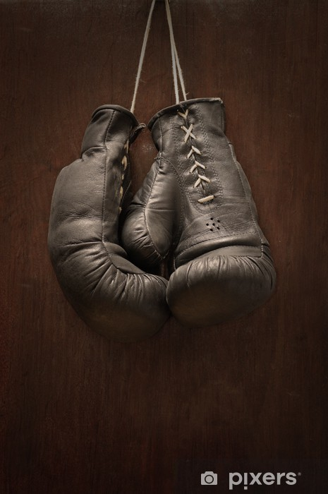 Old boxing gloves Vinyl Wall Mural - Themes