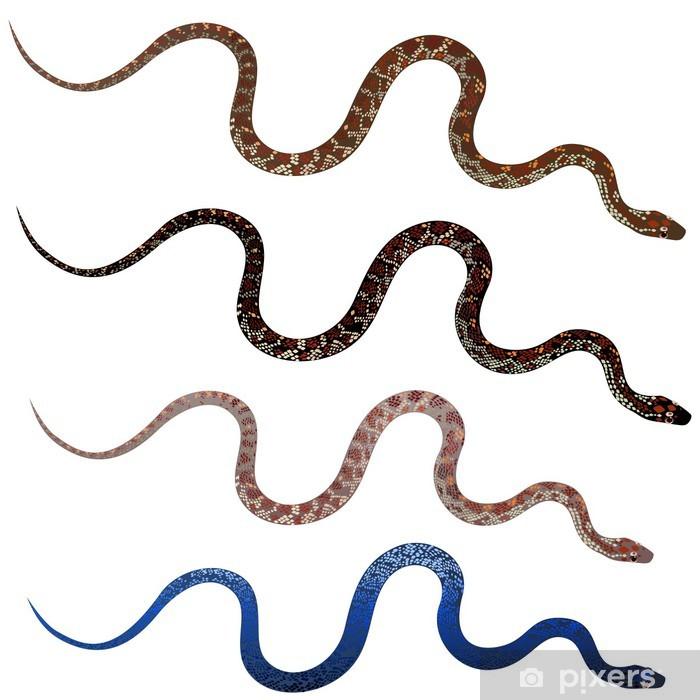 Vinilo Pixerstick Establecer serpientes muy realistas • Pixers ...