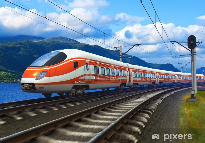 High speed train Vinyl Wall Mural - Themes
