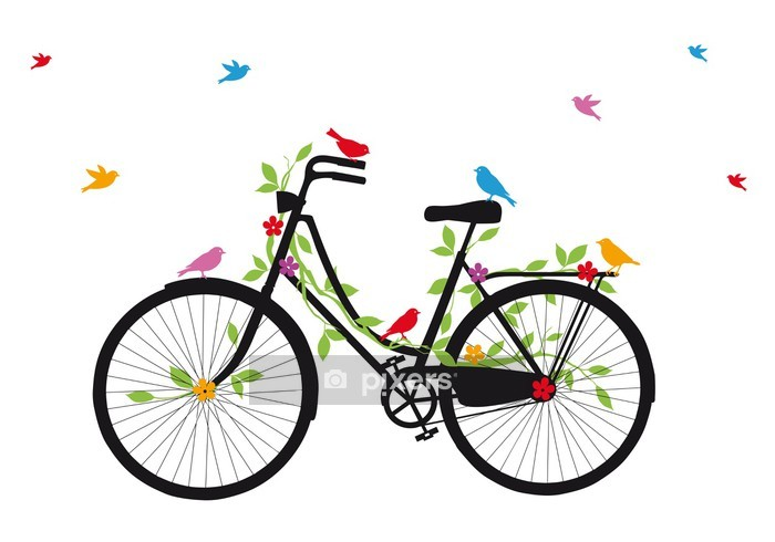 old bicycle with birds, vector Wall Decal - Themes