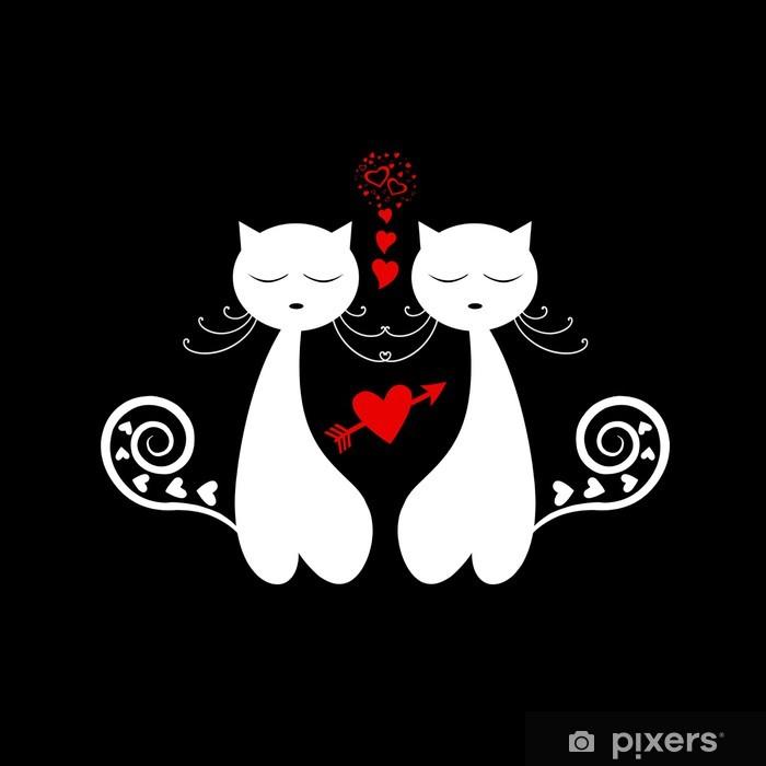 Černá kočička láska