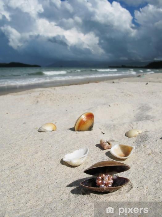 Naklejka Pixerstick Muszle na plaży Langkawi, Malezja - Woda