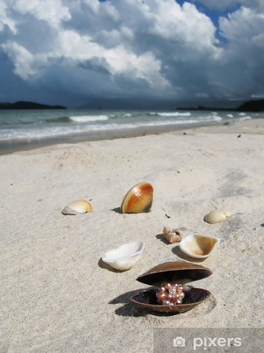 Papier peint vinyle Coquillages sur la plage de Langkawi, Malaisie - Eau