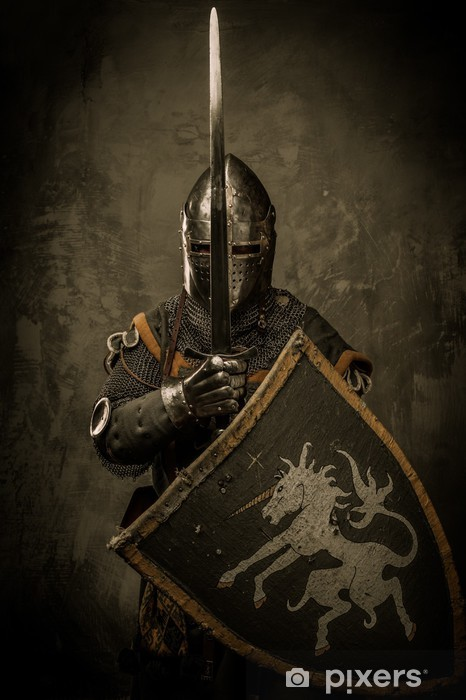 Medieval knight on grey background Vinyl Wall Mural - Knights