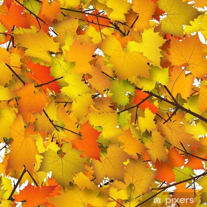 Herbstblatter Herbst Hintergrund Blatter Baumkrone Ahorn