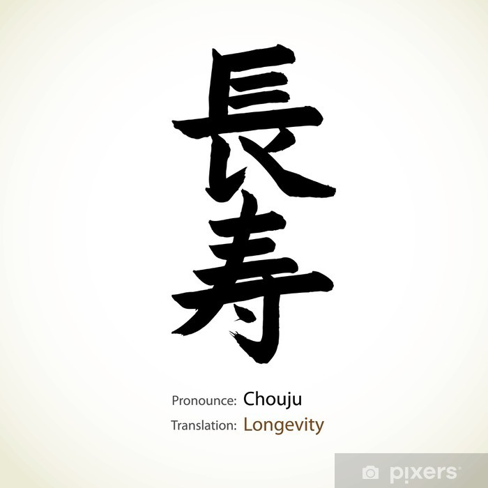 Japanese calligraphy, word: Longevity Vinyl Wall Mural - Art and Creation
