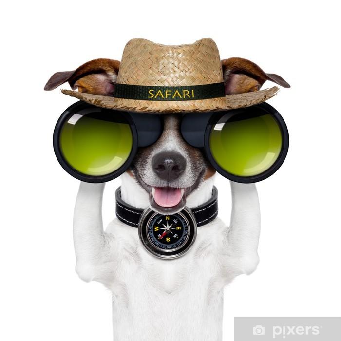 Fototapeta Dalekohled safari kompas pes sledoval • Pixers® • Žijeme ... 795665b2f2