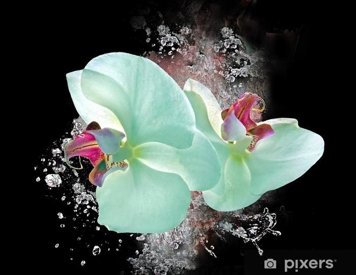 Pixerstick Sticker Wellness-Orchideen - Bestemmingen