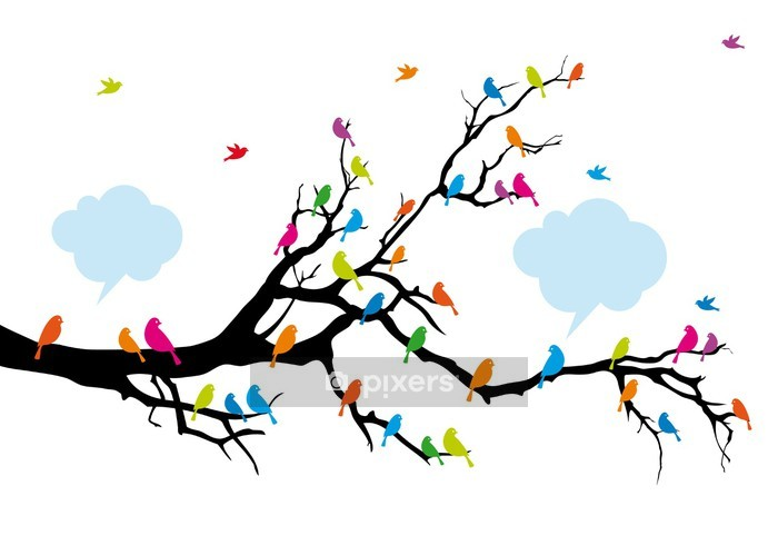 Color birds on tree, vector Wall Decal - Wall decals