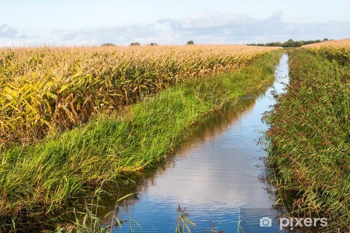 Papier peint vinyle Paysage rural néerlandais à l'automne - Saisons