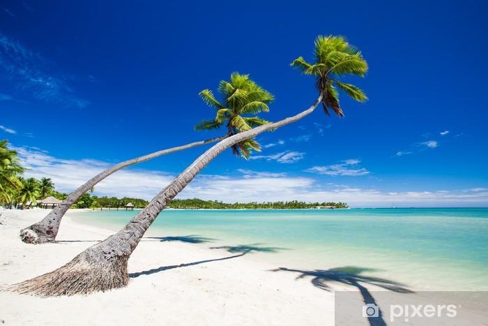 Fototapeta winylowa Palmy wiszące nad wspaniałą tropikalną lagunę - Plaża i tropiki