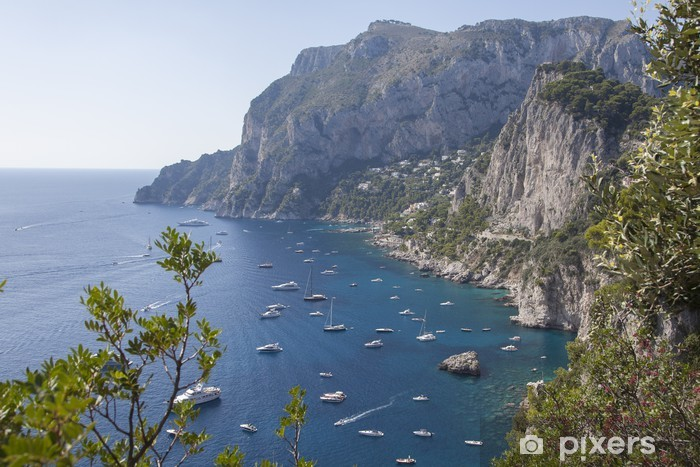 Papier peint vinyle Capri - Europe