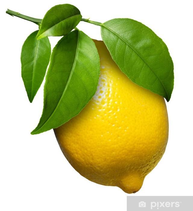 Fototapeta winylowa Świeże cytryny - Owoce