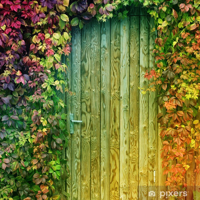 Papier Peint Porte D Entree Coloree Pixers Nous Vivons Pour Changer