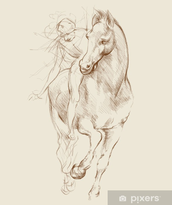 Fototapeta winylowa Konia i jeźdźca. Na podstawie rysunku Leonarda da Vinci - Tematy