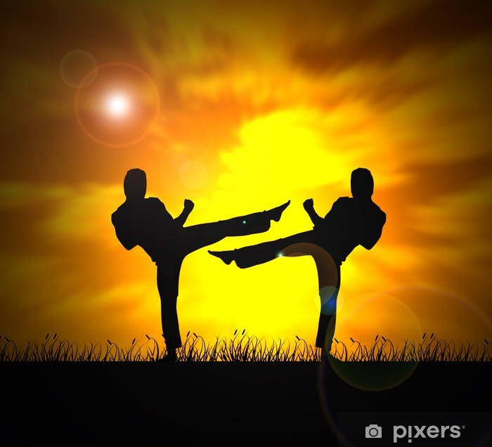 martial arts - two fighters Vinyl Wall Mural - Themes