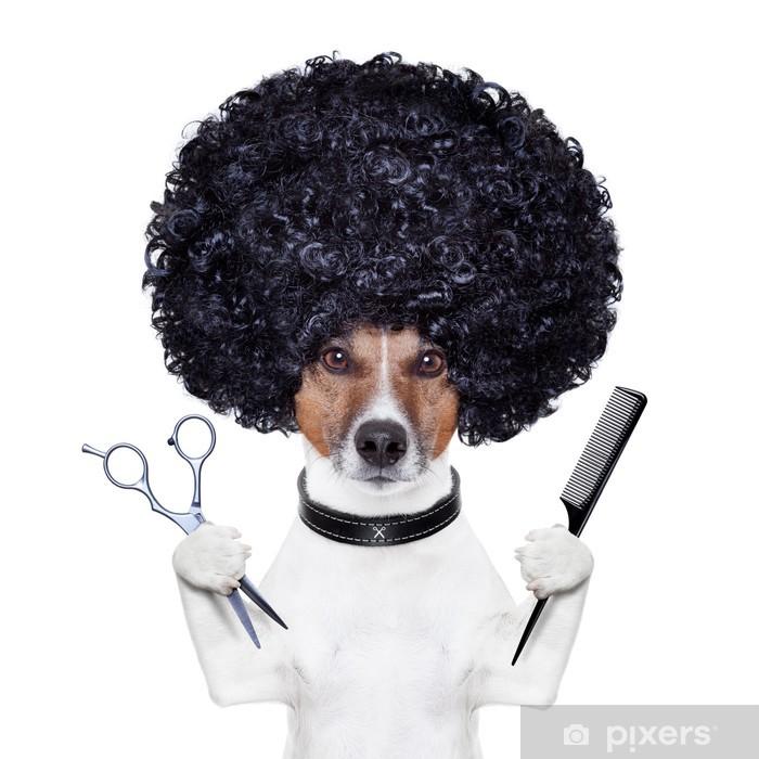 Naklejka Pixerstick Pies fryzjer nożyczki grzebień - Naklejki na ścianę