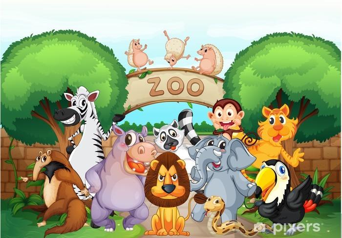 Papier peint vinyle Zoo et les animaux - Destin